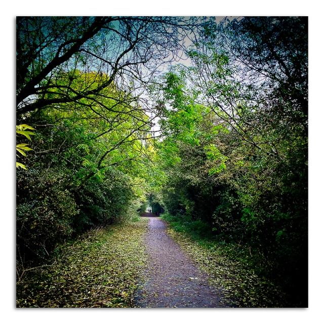 Walk Along Great Central Way