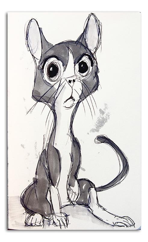 Sharpie the Cat