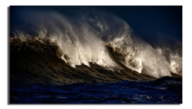 Wild Waves - Jan 2010