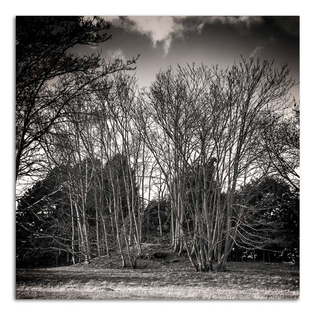 Mound - Ratcliffe on the Wreake