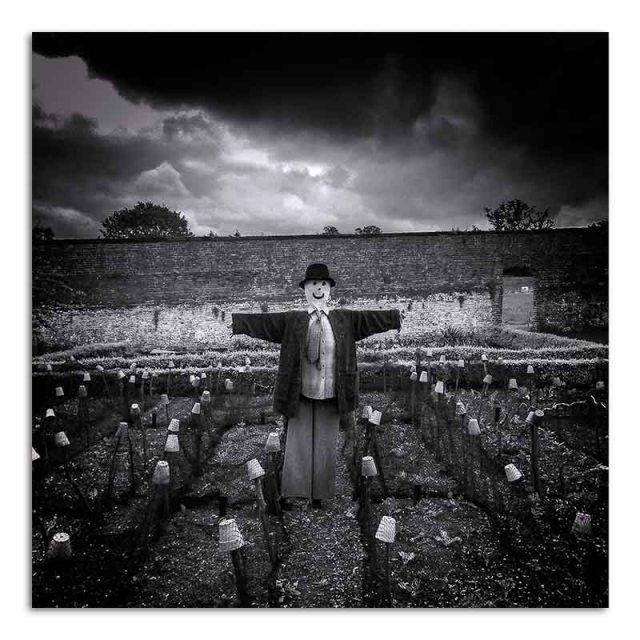 Scarecrow - Calke Abbey