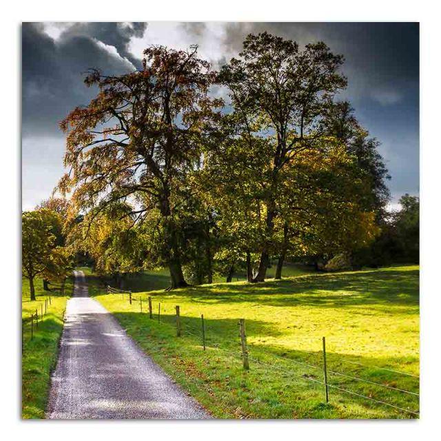 benington-hall-autumn-03