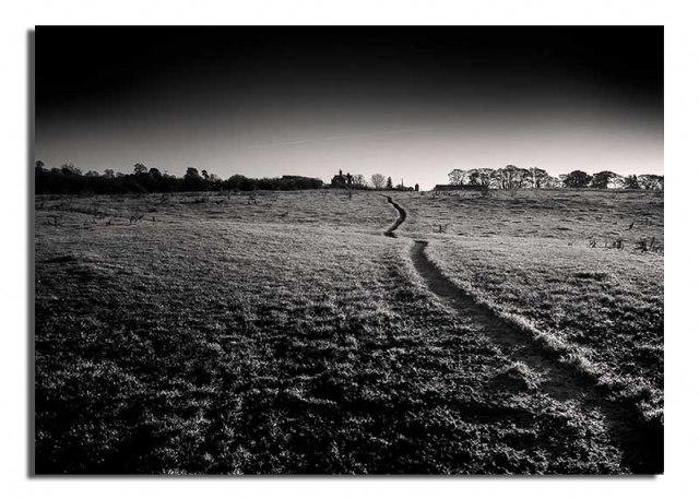 fields-farm