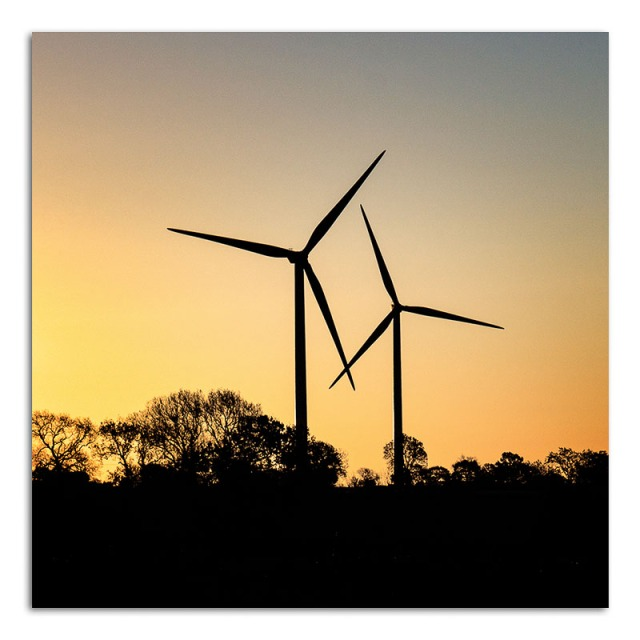 windfarm-at-dawn