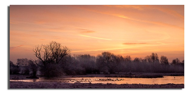 dawn-over-duck-pond